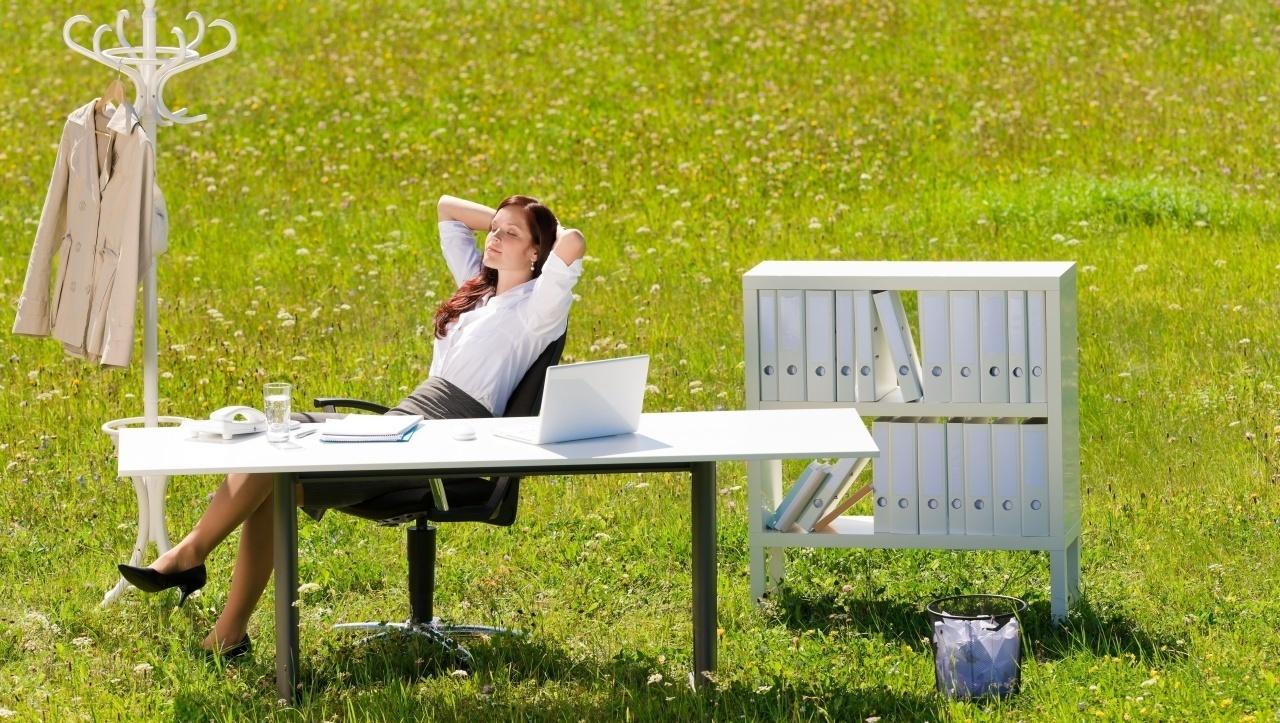Озеленение офиса как новое качество жизни